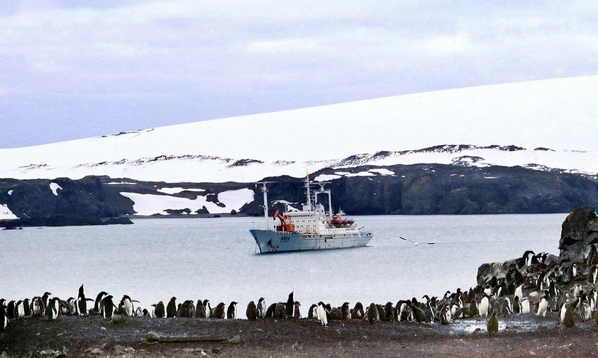 1984年12月26月凌晨二時,考察隊到達南極喬治王島。圖為停泊在喬治王島菲爾德士半島附近的「向陽紅10」考察船。