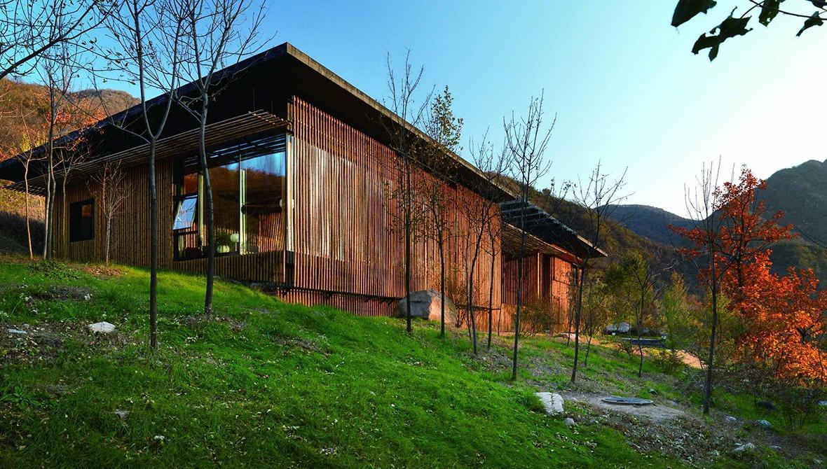 竹屋依山而建,外部被竹子包圍,整齊排列。
