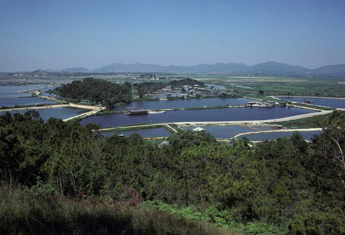 1970年代,落馬洲一帶的魚塘,不少保留至今。