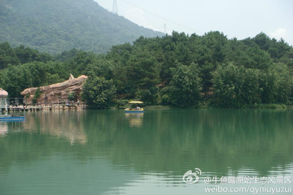 當代中國-中國文化-牛字地名