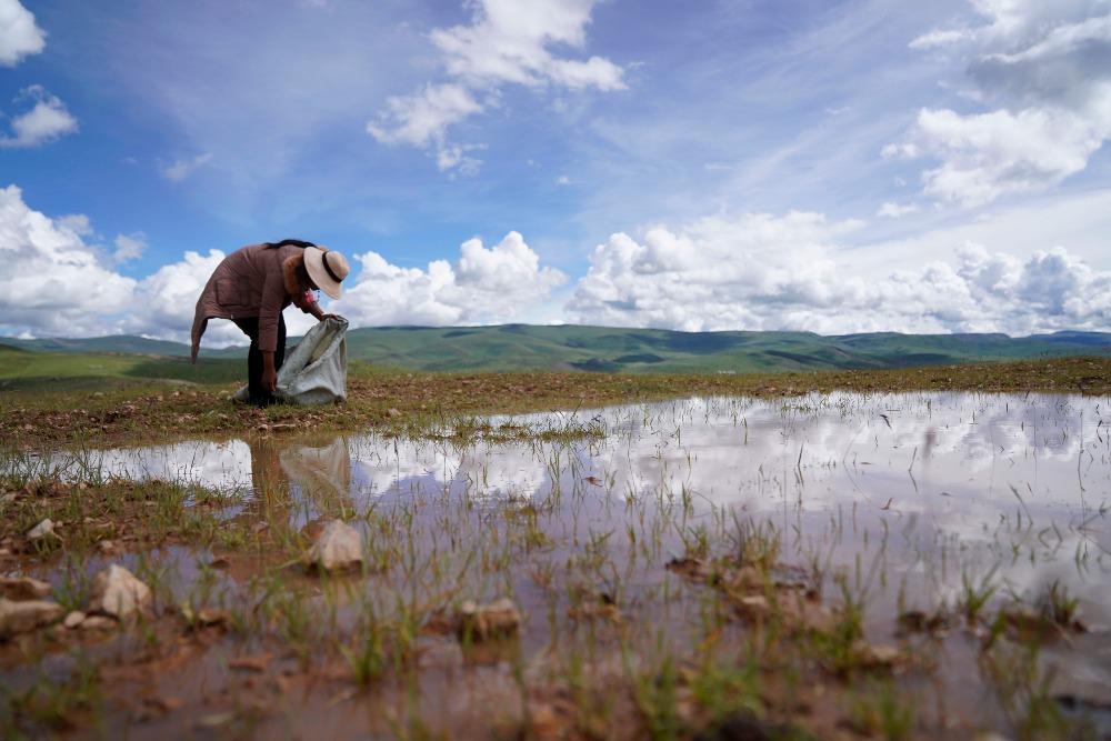 當代中國-中國最大自然保護區