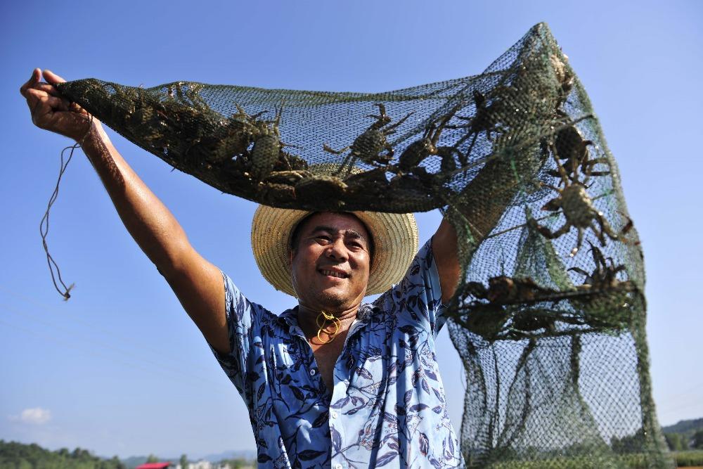 百味中國-食蟹文化上1