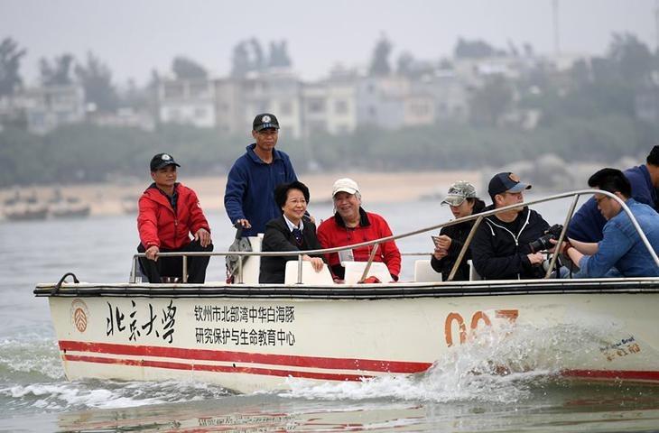 潘文石(左四)在廣西欽州市三娘灣海域乘船出海觀察中華白海豚。(網上圖片)