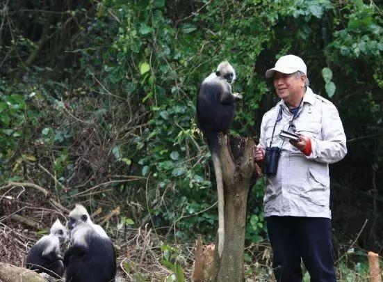 潘文石已經83歲,仍站在保護最前線,由早年在深山追蹤研究野生熊貓,到今天仍孜孜不倦保育白頭葉猴和拯救中華白海豚。(網上圖片)