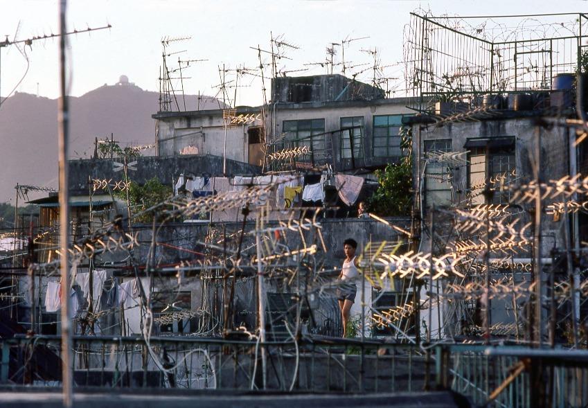 九龍城寨的大廈天台架起密麻麻的「魚骨」電視天線,每次颱風過後,天線都會吹得七歪八斜、七零八落。(圖片來源:Getty)