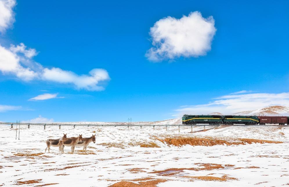 當代中國-青藏鐵路環保