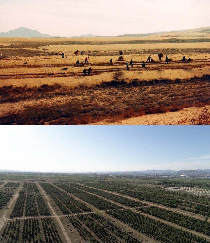 當代中國-碳排放-十三五綠化面積