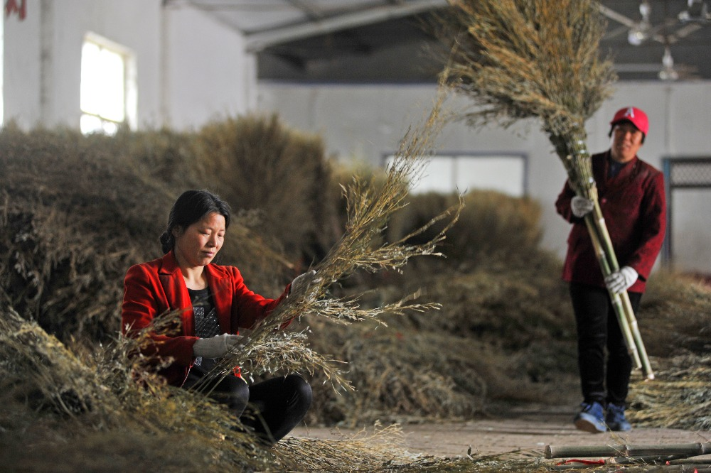當代中國-掃把村-前杜村