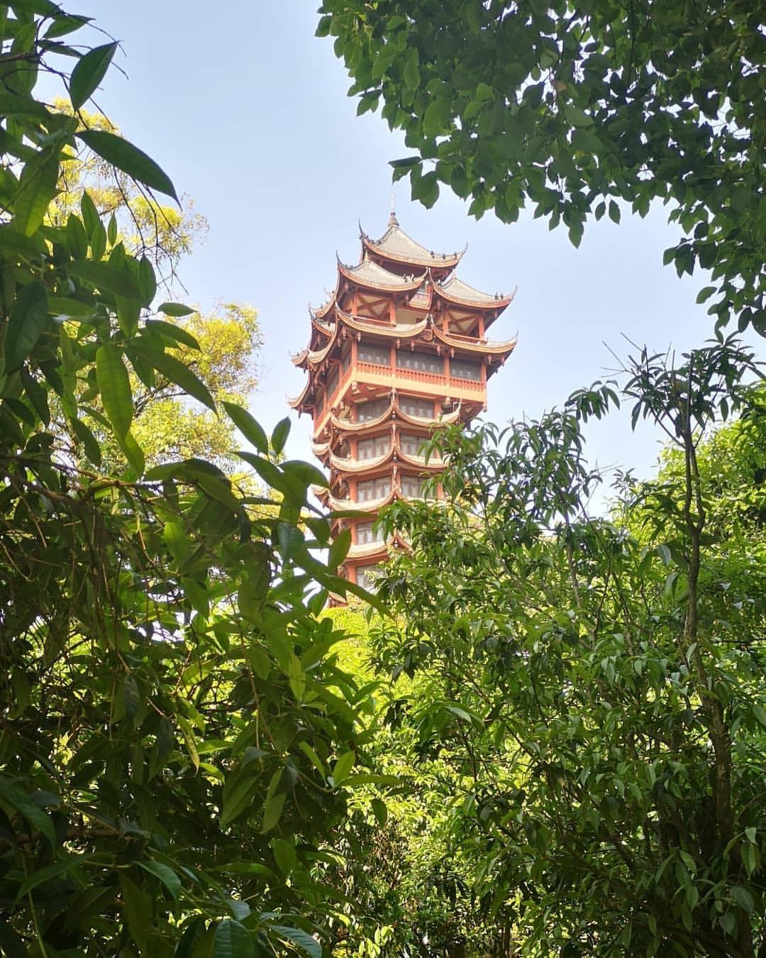 當代中國-中國旅遊-中國文化-四川-成都-九天樓-李白-2