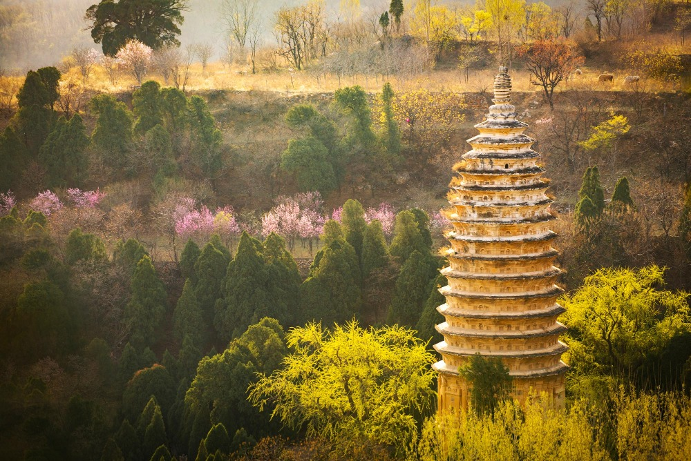 當代中國-中國旅遊-中國文化-中國四大名塔-中式塔-河南-嵩岳寺塔