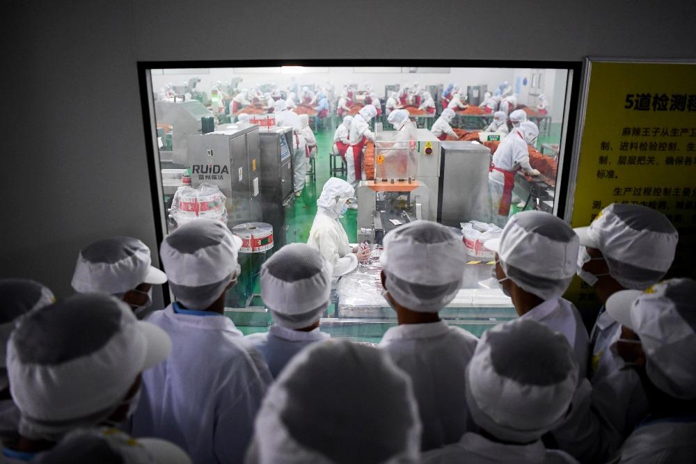 當代中國-中國職業教育規模
