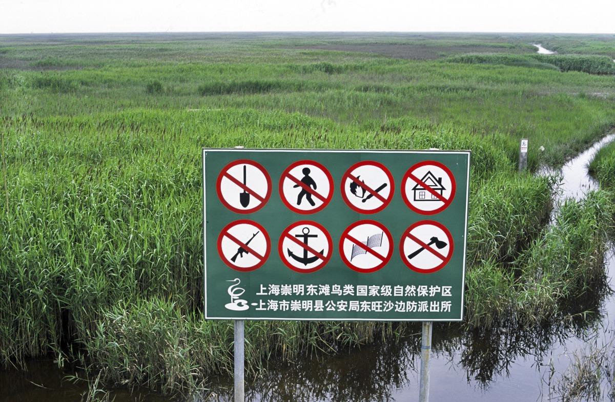 當代中國-中國新聞-濕地立法1