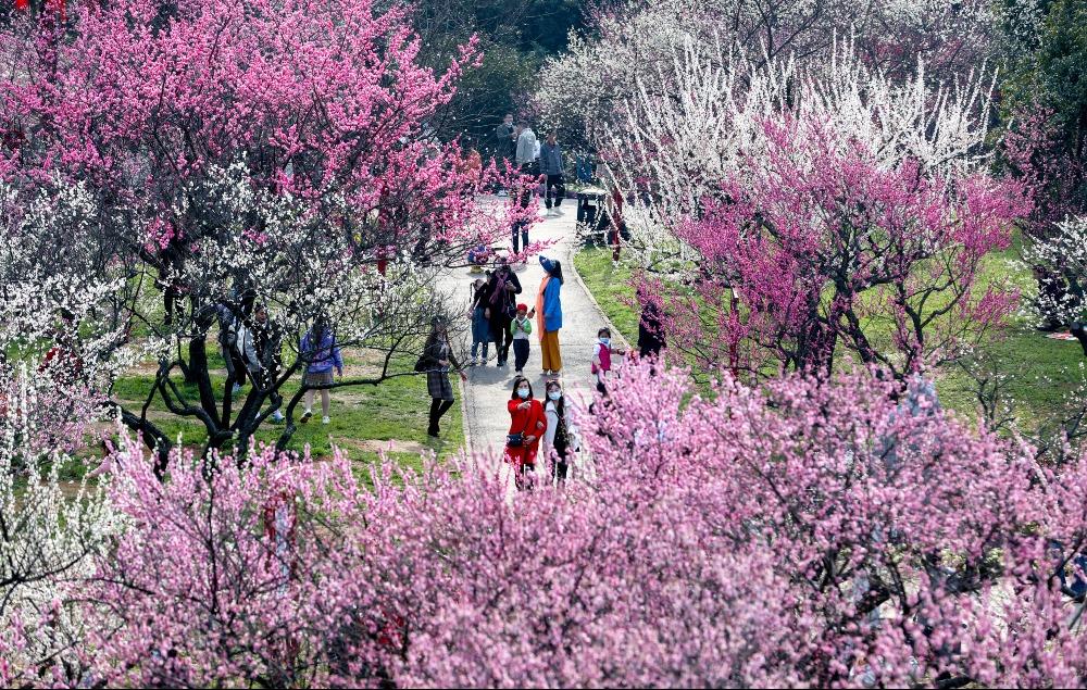 當代中國-中國新聞-武漢旅遊1