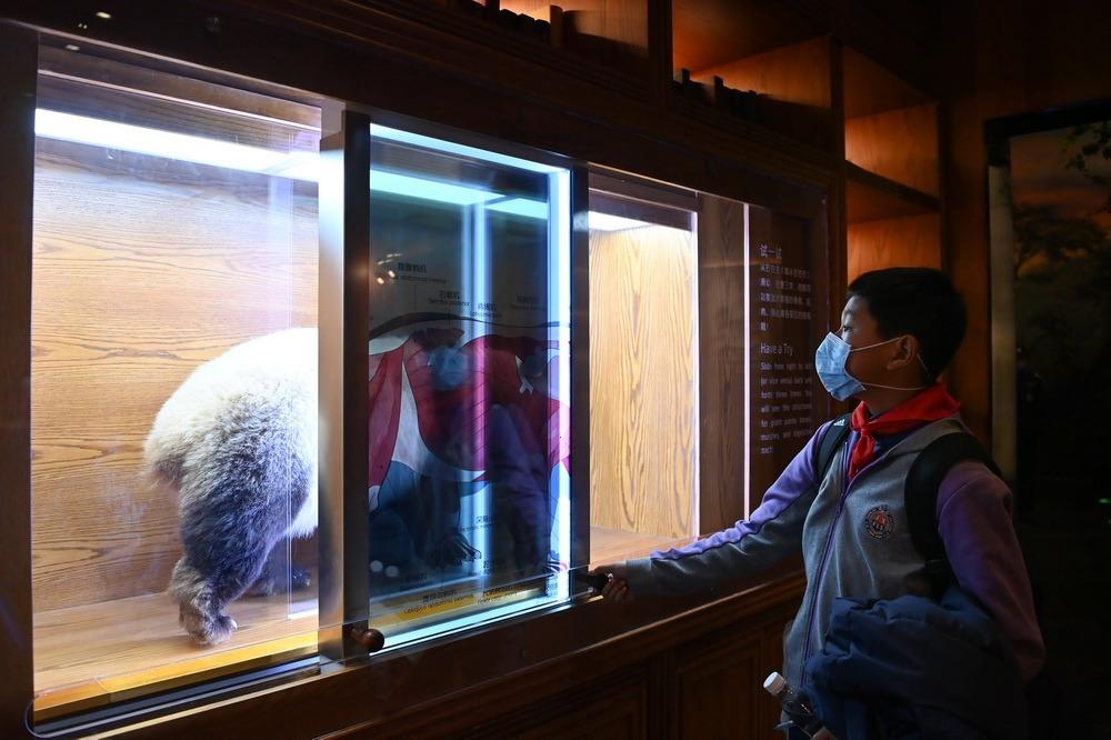 當代中國-中國新聞-熊貓博物館1