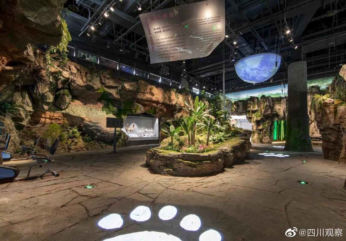 當代中國-中國新聞-熊貓博物館3