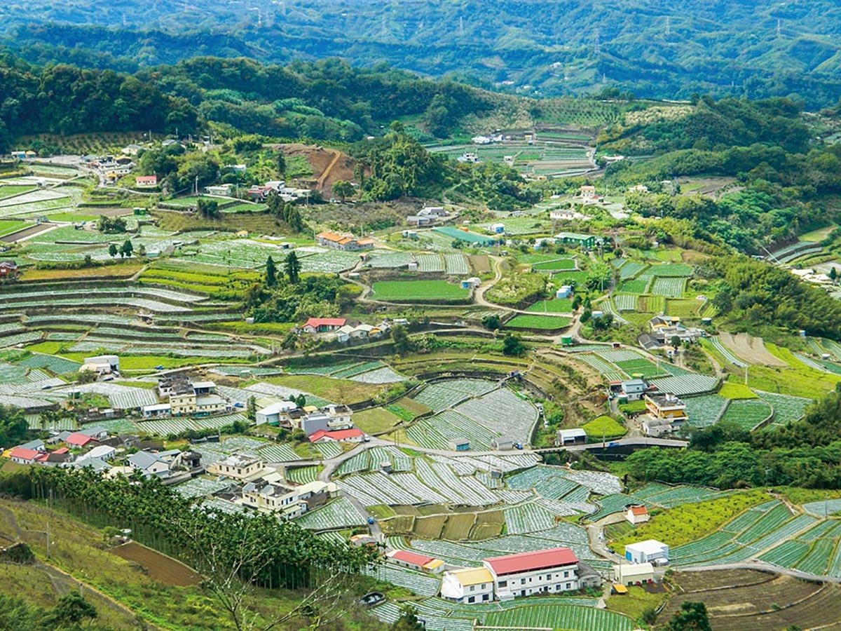 從高處遠眺,可看到馬邦邦的綠悠悠田園空間。