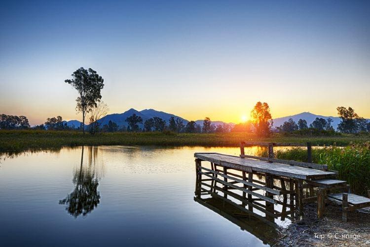 元朗區附近的南生圍,被錦田河及山貝河包圍著,田園景色迷人,不僅是觀鳥、野餐、攝影及寫生的好去處。