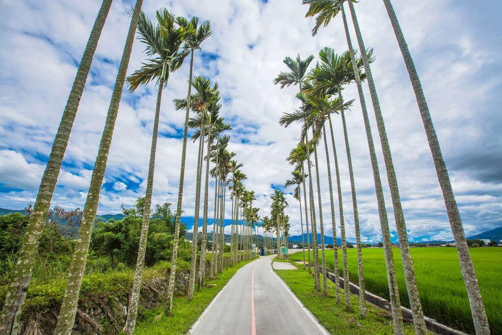 關山環鎮自行車道沿途擁有優美的田野景觀。