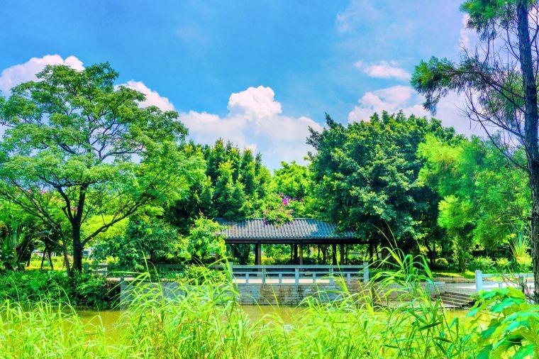 當代中國-中國旅遊-廣東旅遊-佛山-佛山小提琴教堂-04