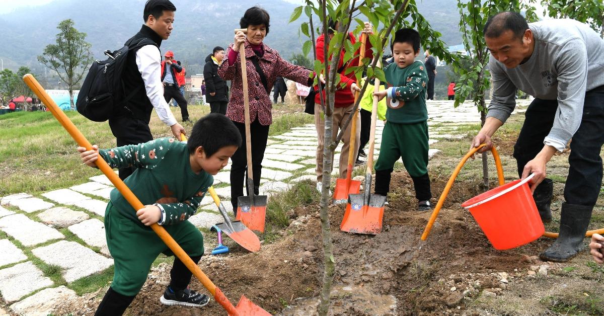 當代中國-新華網-這個春天種下綠色希望