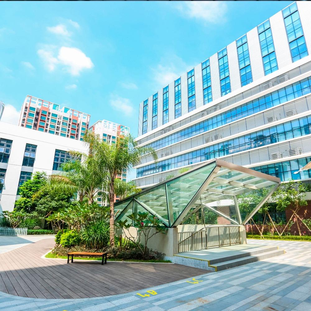當代中國-粵港澳大灣區-深圳國際學校之一