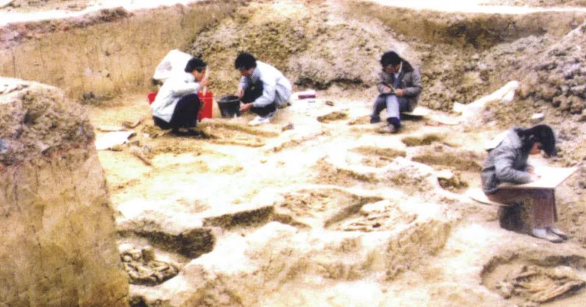當代中國-當年今日-考古發現