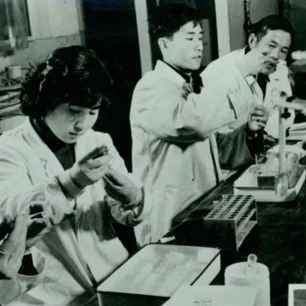 當代中國-當年今日-酵母丙氨酸轉移核糖核酸