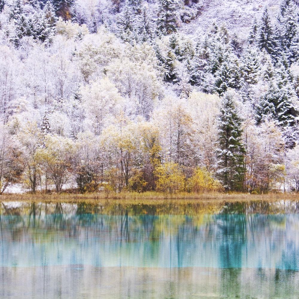 當代中國-中國旅遊-看九寨溝銀裝白雪欣賞當代中國冬季美景